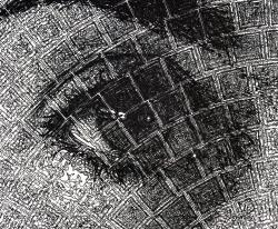 8.5 2008_07_31_linda_detail_eye.jpg