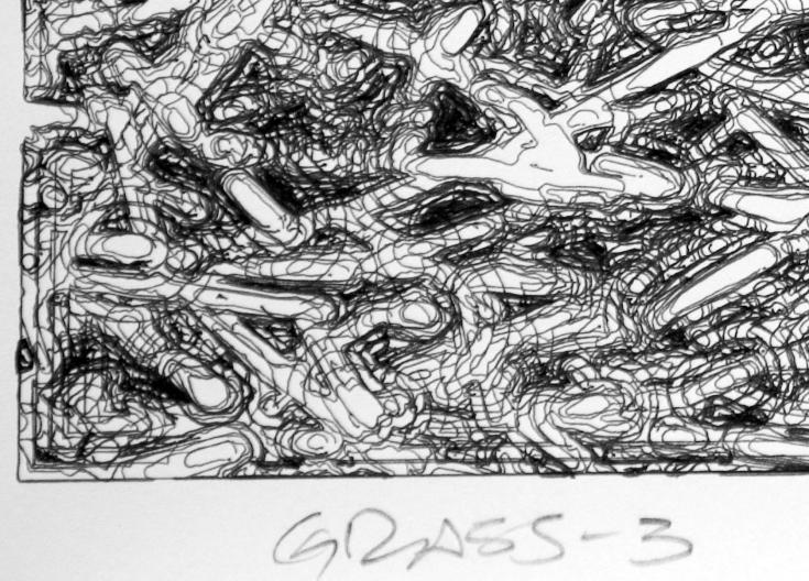 3 2008_08_grass3_detail_ll