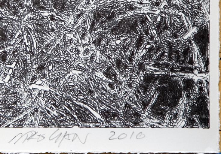 4 2008_08_grass3_detail_lr