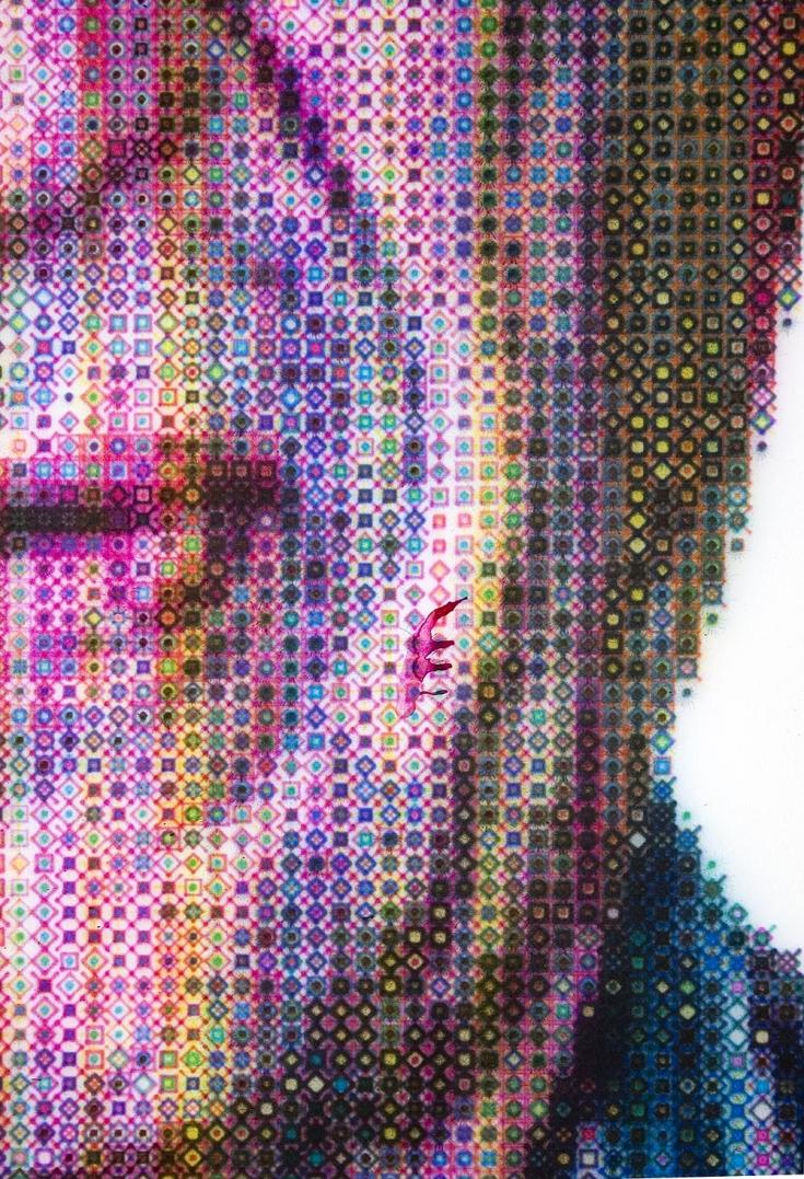 6 2007_02_13_chin_detail.jpg